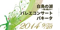 ballet_festa2014
